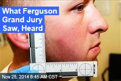 What Ferguson Grand Jury Saw, Heard