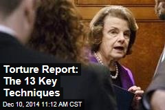 Torture Report: The 13 Key Techniques