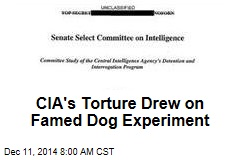 CIA's Torture Drew on Famed Dog Experiment