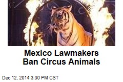 Mexico Lawmakers Ban Circus Animals