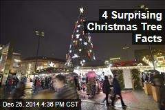 4 Surprising Christmas Tree Facts