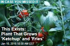 This Exists: Plant That Grows 'Ketchup' and 'Fries'