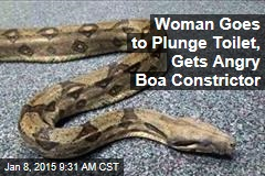 Woman Goes to Plunge Toilet, Gets Angry Boa Constrictor