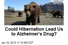Could Hibernation Lead Us to Alzheimer's Drug?