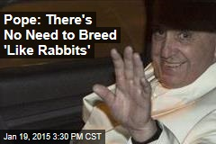 Pope: There's No Need to Breed 'Like Rabbits'