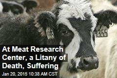 At Meat Research Center, a Litany of Death, Suffering