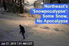 Northeast's 'Snowpocalypse': Some Snow, No Apocalypse
