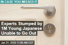 Experts Stumped by 1M Young Japanese Unable to Go Out