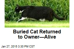 'Dead' Cat Digs His Way Out of Grave
