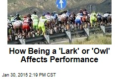How Being a 'Lark' or 'Owl' Affects Performance