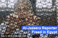 Al-Jazeera Reporter Freed in Egypt