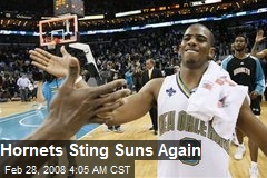 Hornets Sting Suns Again