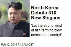North Korea Debuts 310 New Slogans