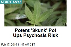 Potent 'Skunk' Pot Ups Psychosis Risk