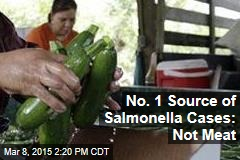 No. 1 Source of Salmonella Cases: Not Meat