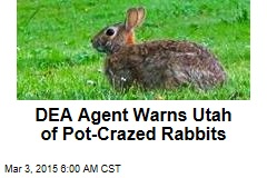 DEA Agent Warns Utah of Pot-Crazed Rabbits
