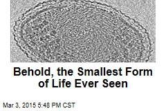 Behold, the Smallest Form of Life Ever Seen