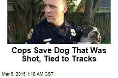 Cops Save Dog That Was Shot, Tied to Tracks