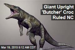 Giant Upright 'Butcher' Croc Ruled NC