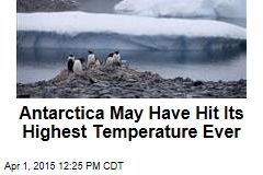 Antarctica May Have Hit Its Highest Temperature Ever