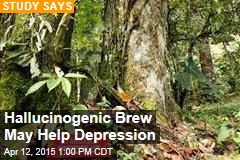 Hallucinogenic Brew May Help Depression
