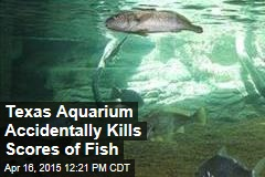 Texas Aquarium Accidentally Kills Scores of Fish