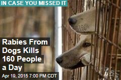 Rabies From Dogs Kills 160 People a Day