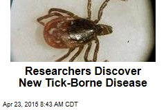 Researchers Discover New Tick-Borne Disease