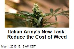 Italian Army's New Task: Growing Cheap Weed