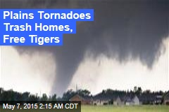 Plains Tornadoes Trash Homes, Free Tigers