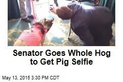 Senator Goes Whole Hog to Get Pig Selfie