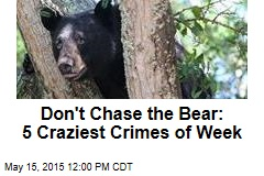 Don't Chase the Bear: 5 Craziest Crimes of Week