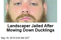 Landscaper Jailed After Mowing Down Ducklings