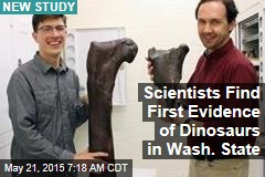 Scientists Find First Evidence of Dinosaurs in Wash. State