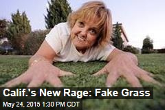 Calif.'s New Rage: Fake Grass