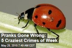 Pranks Gone Wrong: 5 Craziest Crimes of Week