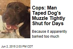 Cops: Man Taped Dog's Muzzle Tightly Shut for Days