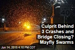 Culprit Behind 3 Crashes and Bridge Closing? Mayfly Swarms