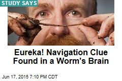 Eureka! Navigation Clue Found in a Worm's Brain