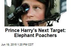 Prince Harry's Next Target: Elephant Poachers