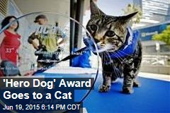 'Hero Dog' Award Goes to a Cat