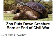 Calif. Zoo Puts Down 150-Year-Old Tortoise