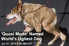 'Quasi Modo' Named World's Ugliest Dog