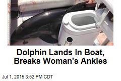 Dolphin Lands In Boat, Breaks Woman's Ankles
