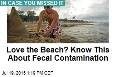 Love the Beach? Know This About Fecal Contamination