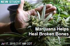 Marijuana Helps Heal Broken Bones