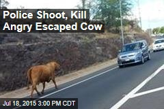 Police Shoot, Kill Angry Escaped Cow