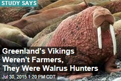 Greenland's Vikings Weren't Farmers, They Were Walrus Hunters