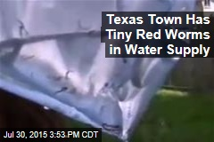 Texas Town Not Happy With Worms in Water Supply