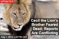 Cecil the Lion's Brother Feared Dead; Reports Are Conflicting
